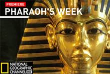 Pharaoh's Week, Harem Conspiracy